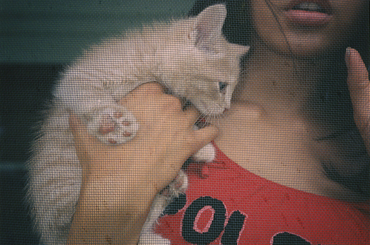 Bad Kitten_1