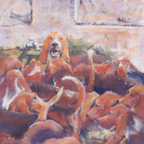 Hounds of Cheverny