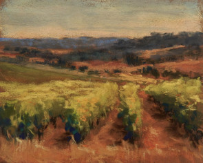 Afternoon in the Vineyard
