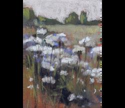 Meadow Morn