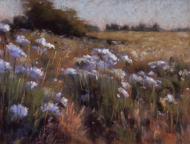 Queen Anne's Field
