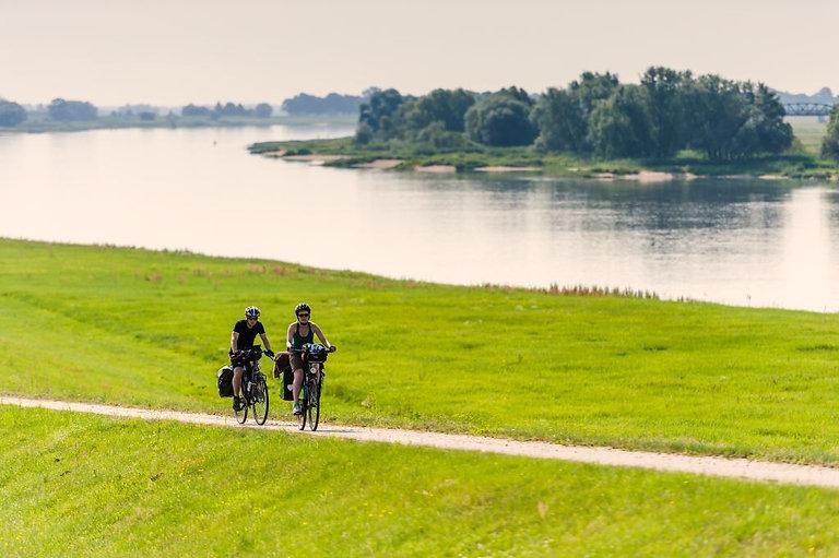 Elbe Radweg