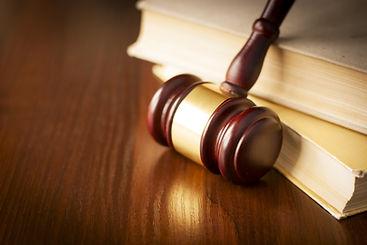 ליטיגציה ובתי משפט