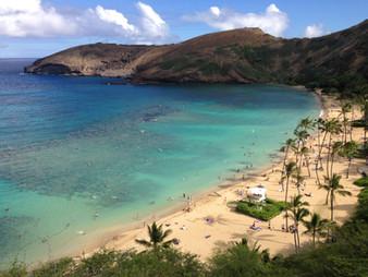 Hawaii - 14 (99).JPG