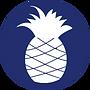 pineapple circle.png