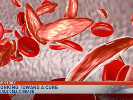 Possible Sickle Cell Disease Cure Discovered
