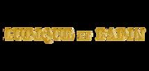 Logo Ludique.png