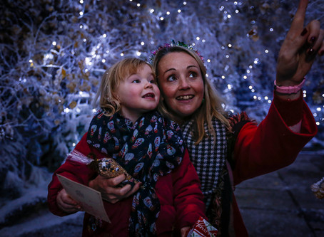 Lotherton unveils this year's icy Christmas Experience