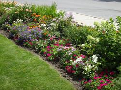 Town Office Garden