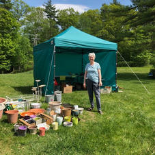 Bake and Plant Sale