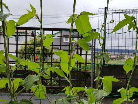 創知堂は「九州で頑張る企業」が「もっと成長したい」を「TRIZ」で支援します!
