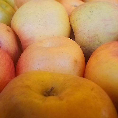 manzana fuji  malla 1kg