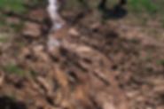 Erosion. Erosion durch Wasser. Das Wasser gräbt sich in den Boden