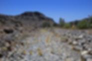 Ausgetrocknetes Flussbett
