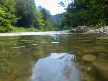 Regenwasser gehört nicht in den Fluss!!!