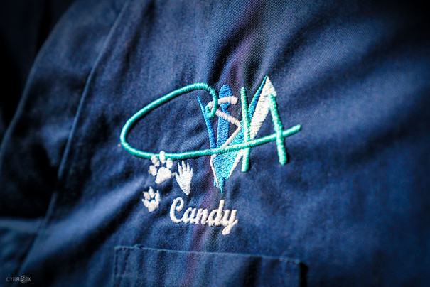 CandyVethome