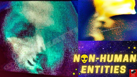 NON-HUMAN ENTITIES17YOUTUBE.png
