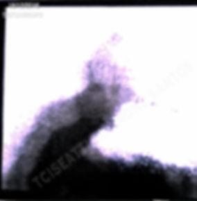 181216TCISEATTLE1-48_-_Versão_2.jpg
