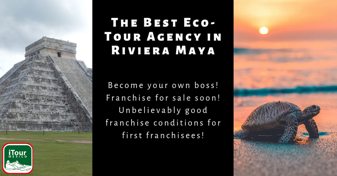 The Best Eco-Tour Agency in Riviera Maya