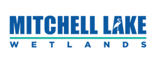 MLW LOGO_Blue.png