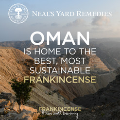 The best frankincense in the world