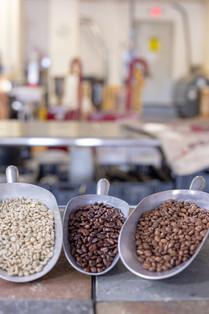 High quality beans yields high quality brews.