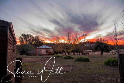 Rural Life 3.jpg