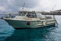 Ocean Diver boat.jpg