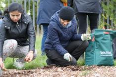 NPCG Bulb Planting 1.JPG