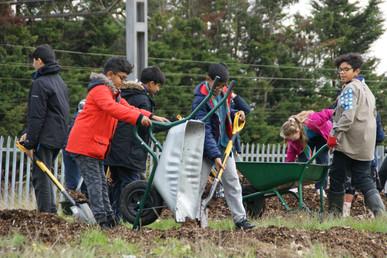 NPCG Bulb Planting 19.JPG