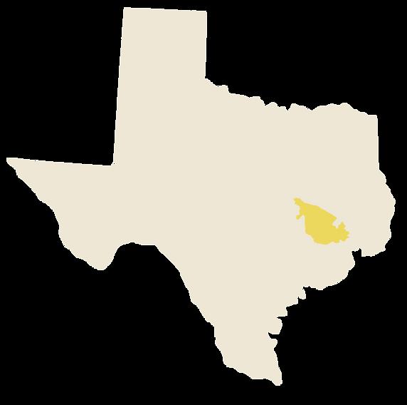 Texas-Magnolia-03.png