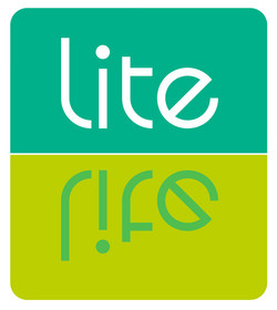 Lite_square_2colors