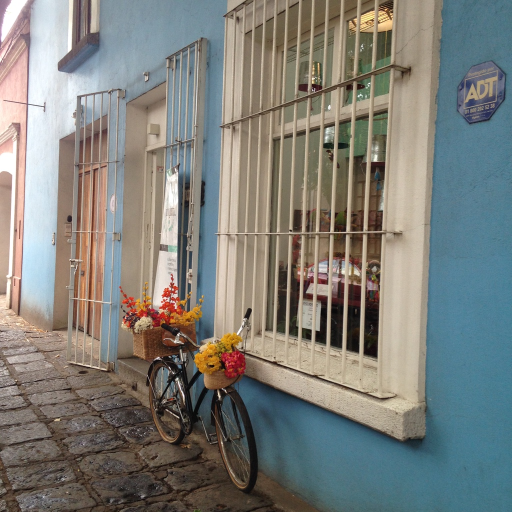 Coyoacan Mekilo City