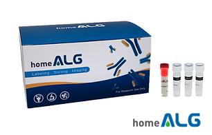 HomeALG-R-PE Labeling Kit.png
