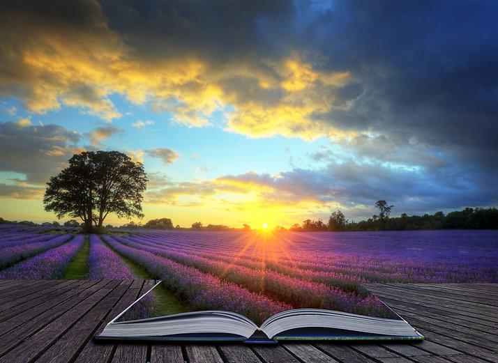 Creative concept image of beautiful imag