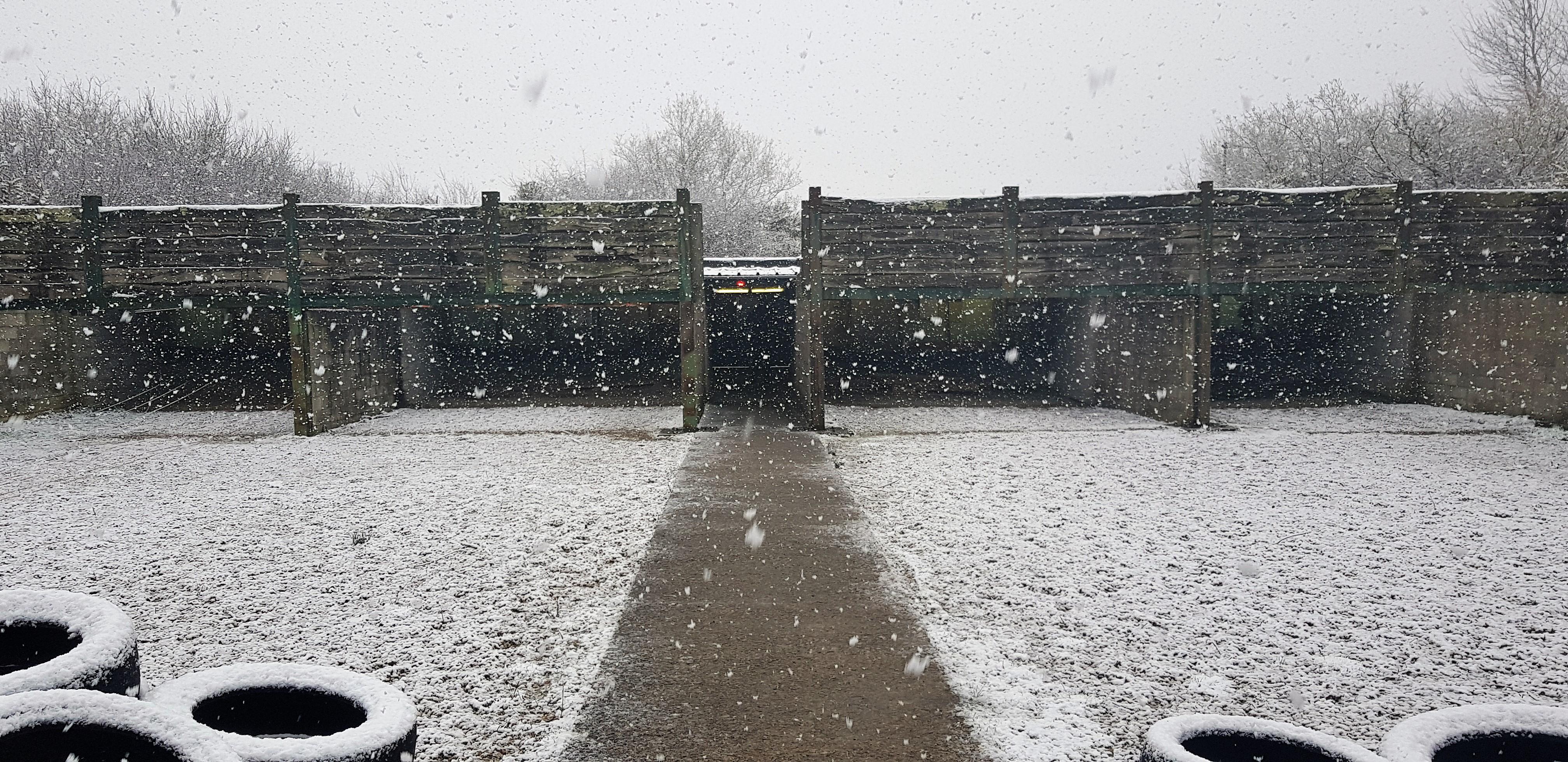 Stand sous la Neige 18 mars 2018