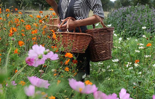 atelier saison fleurs comestibles