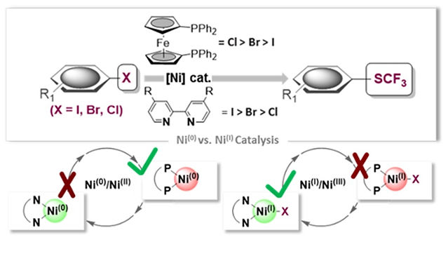 """<p class=""""font_8""""><strong>When Weaker Can Be Tougher: On the Role of Oxidation State (I) in P- vs. N-Ligand Derived Ni-Catalyzed Trifluoromethylthiolation of Aryl halides</strong></p>"""