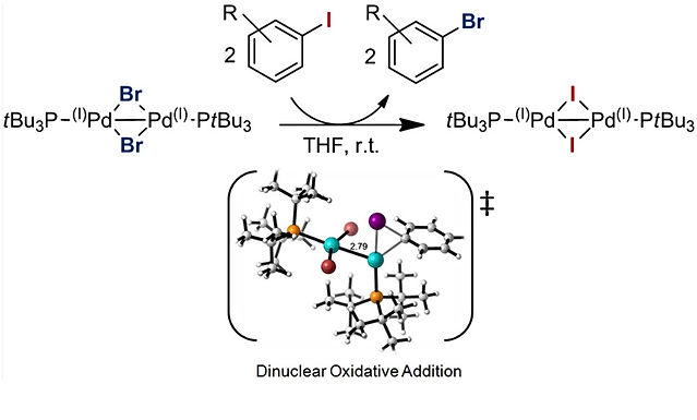 """<p class=""""font_8""""><strong>Dinuclear Pd(I) Complexes – Solely Precatalysts? Demonstration of Direct Reactivity of a Pd(I) Dimer with an Aryl Iodide</strong></p>"""