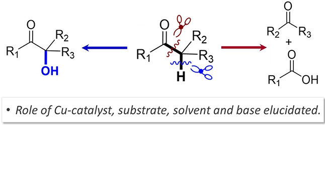 """<p class=""""font_8""""><strong>Factors that Control C-C Cleavage versus C-H Bond Hydroxylation in Copper-Catalyzed Oxidations of Ketones with O₂</strong></p>"""