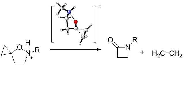 """<p class=""""font_8""""><strong>Mechanistic Insight into the Spirocyclopropane Isoxazolidine Ring Contraction</strong></p>"""