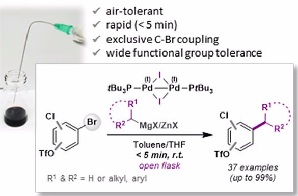 """<p class=""""font_8""""><strong>Palladium(I) Dimer Enabled Extremely Rapid and Chemoselective Alkylation of Aryl Bromides over Triflates and Chlorides in Air</strong></p>"""
