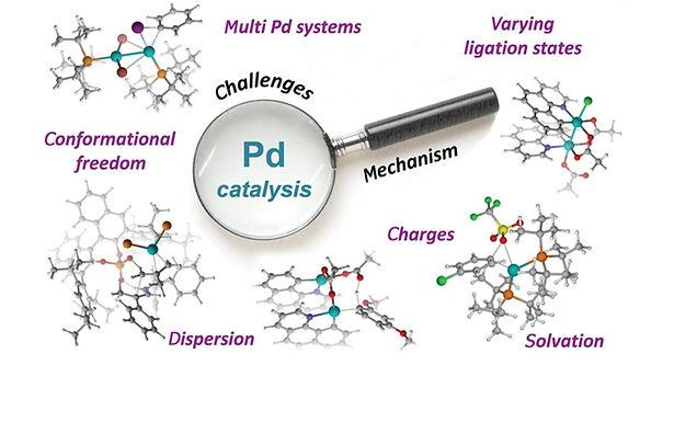 "<p class=""font_8""><strong>Computationally Deciphering Palladium-Catalyzed Reaction Mechanisms</strong></p>"