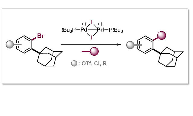"""<p class=""""font_8""""><strong>Selective Ortho Functionalization of Adamantylarenes enabled by Dispersion and an Air-Stable Pd(I) Dimer</strong></p>"""