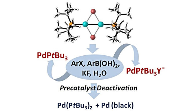 """<p class=""""font_8""""><strong>Reactivity and Stability of Dinuclear Pd(I) Complexes: Studies on the Active Catalytic Species, Insights into Precatalyst Activation and Deactivation, and Application in Highly Selective Cross-Coupling Reactions</strong></p>"""