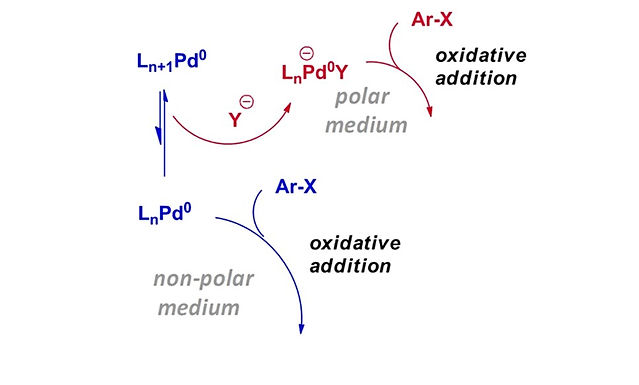 """<p class=""""font_8""""><strong>Orthogonal Selectivities under Pd(0) Catalysis with Solvent Polarity: An Interplay of Computational and Experimental Studies</strong></p>"""