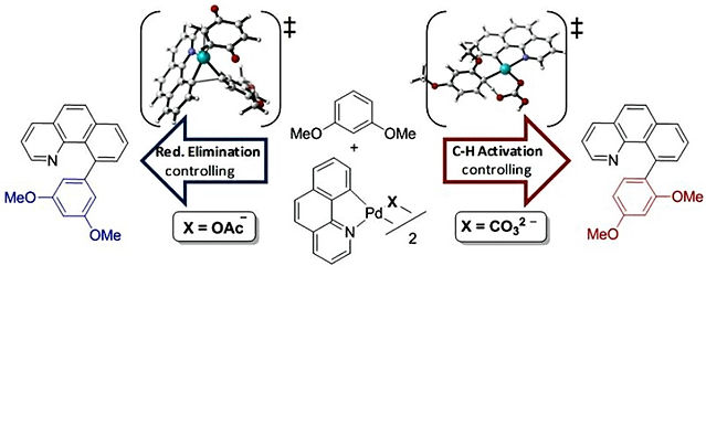 """<p class=""""font_8""""><strong>On the Role of Anionic Ligands in the Site-Selectivity of Oxidative C-H Functionalization Reactions of Arenes</strong></p>"""