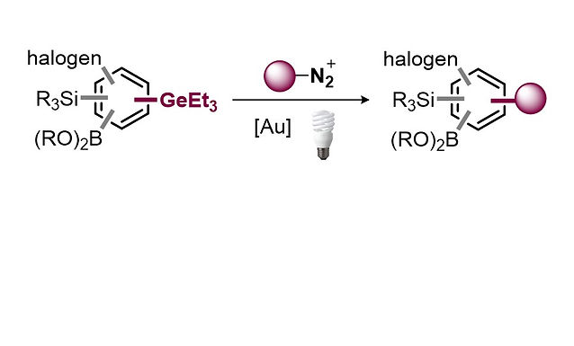 """<p class=""""font_8""""><strong>Modular &amp; Selective Arylation of Aryl Germanes (C-GeEt₃) over</strong></p> <p class=""""font_8""""><strong>C-Bpin, C-SiR₃ and Halogens enabled by Light-Activated Gold-Catalysis</strong></p>"""