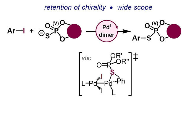 """<p class=""""font_8""""><strong>Arylation of Axially Chiral Phosphorothioate Salts via Dinuclear Pd(I) Catalysis</strong></p>"""