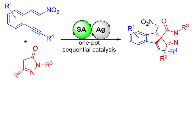 """<p class=""""font_8""""><strong>Asymmetric Synthesis of Spiropyrazolones by Sequential Organo- and Silver Catalysis</strong></p>"""